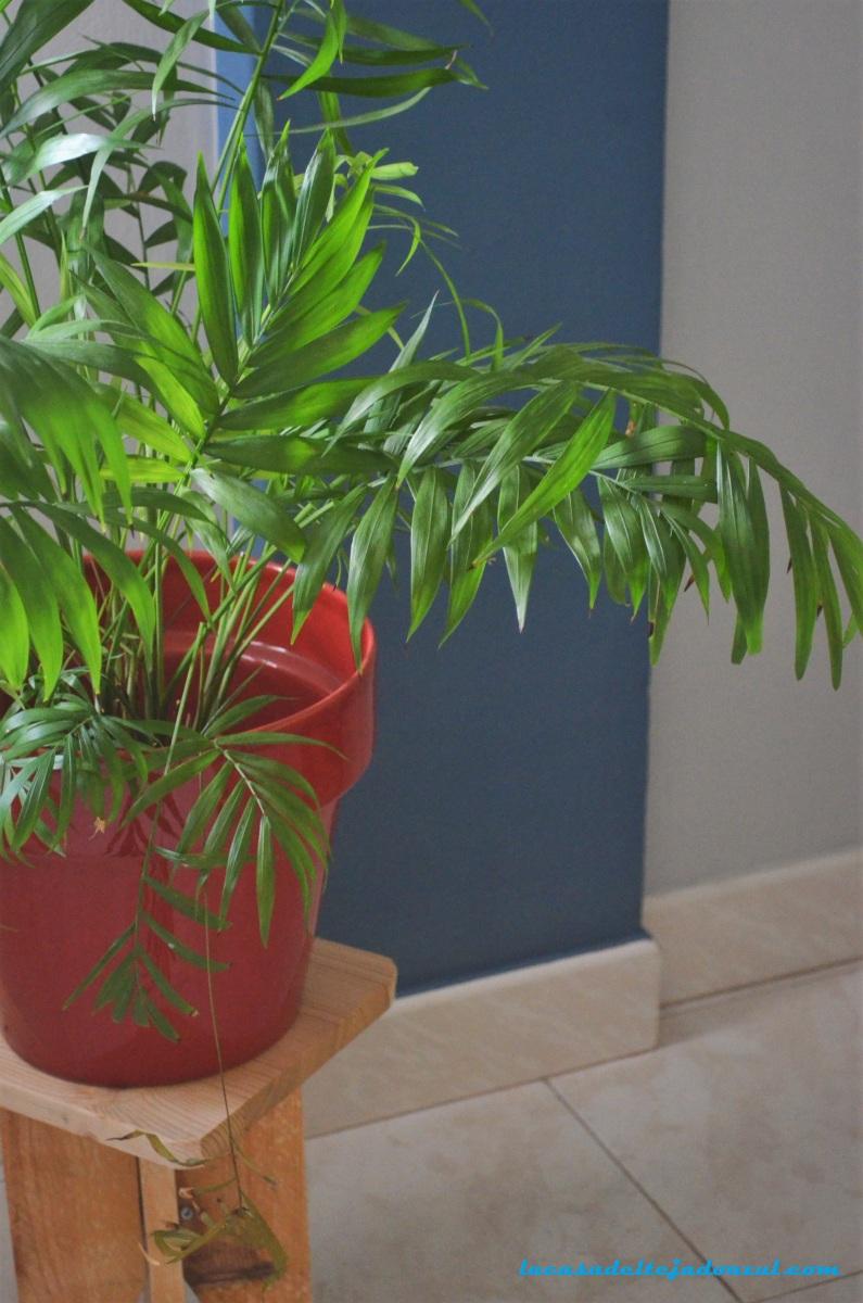 Cómo hacer un taburete para plantas